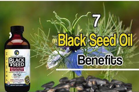 black-seed-blog